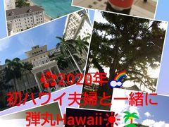 2020年初ハワイ夫婦と一緒に弾丸Hawaii③JALパック「レインボータクシー」利用してみました・エッグスンシングスデビュー・そして帰国~