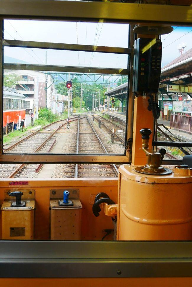 2019年9月に行った箱根旅。<br />行きは箱根湯本からバスでぴゅーんとポーラ美術館へ。<br />箱根で中華を堪能し、湿生花園をお散歩し、帰りは登山電車で<br />のんびり戻る1泊2日旅。<br />※早く箱根登山電車が営業再開できるよう応援しております。。。