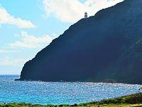 Oahu-27 シーライフパーク 園内一巡-4時間自由に ☆イルカと遊べるプログラムは高価