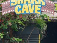 Oahu-28 シーライフパーク シャークケーブで ☆大水槽に4種類のサメ・ダイバーも
