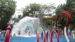 4歳子連れドイツ&シンガポール【10】動物園で水遊び&ミシュラン1つ星チキンヌードル編