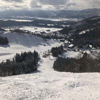 海外旅行だけでなく国内スキーも行くよ♪ 2020年2月・湯田中温泉+野沢温泉の巻
