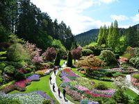 バンクーバーと近郊の島々へ(12)~春爛漫のブッチャート・ガーデンで花散歩&アフタヌーンティー