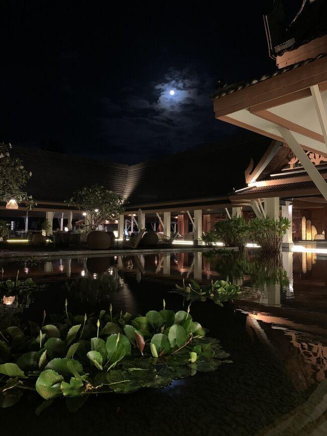 パトンビーチからラグーナエリアに移動しました。<br />後半3泊分~帰国までの旅日記です♪<br />ーーーーーーーーーーーーーーーーーーー<br />2/11(火)<br />・13:30 Outrigger Laguna Phuket Beach Resort到着<br />・14:30 ラウンジのティタイムへ<br />・15:00 プールへ<br />・17:00 カナルヴィレッジのファミマへ<br />     (私と息子は少し散策TIME)<br />・18:00 主人は先にラウンジのカクテルタイムへ<br />(19:05位に私と息子がラウンジで合流)<br />ーーーーーーーーーーーーーーーーーーー<br />2/12(水)<br />・  9:00 旦那さんのみ朝食<br />・10:00 息子と私が朝食<br />・11:00~ボートでデシュタニへ散歩<br />・13:00 プールへ<br />・14:30 ラウンジのティタイムへ<br />・16:00 プールへ<br />・18:00 主人は先にラウンジのカクテルタイムへ<br />(19:10位に私と息子がラウンジで合流)<br />・19:40カナルヴィレッジのファミマへ<br />ーーーーーーーーーーーーーーーーーーー<br />2/13(木) <br />・  8:00 朝食<br />・10:00 プールへ<br />・13:30~ 息子昼寝&母マッサージへ<br />・16:00 プールへ<br />・18:00 主人は先にラウンジのカクテルタイムへ<br />(19:00位に私と息子がラウンジで合流)<br />・19:40カナルヴィレッジのファミマへ<br />ーーーーーーーーーーーーーーーーーーー<br />2/14(金)<br />・7:00 朝食<br />・ホテルのプールへ<br />・11:30 チェックアウト<br />・13:30 プール終了<br />(シャワールームで身支度)<br />・15:00 ホテル→空港移動 カーチャーター<br />・15:40 空港到着<br />◆MI755プーケット18:00→シンガポール21:00<br />       ~~乗り継ぎ1時間45分~~<br />◆SQ636シンガポール22:45→<br />ーーーーーーーーーーーーーーーーーーー<br />2/15(土)<br />羽田06:20<br />※タクシーで自宅へ(6800円)<br />ーーーーーーーーーーーーーーーーーーー<br />ラウンジアクセスのフードプロモーション<br />①ラウンジ朝食       7:00~10:30<br />②Light snacks       14:30~17:00<br />③イブニングカクテル   18:00~19:30<br />④ドリンクサービス     7:00~22:00