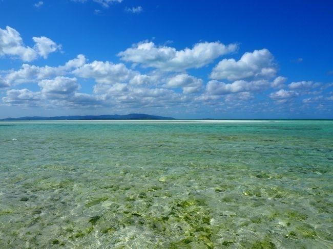 前回で竹富島に渡り、港から浜まで歩いてきました。今回は旅行記1冊使って、カイジ浜~コンドイビーチ付近の散策編。いやあ、海めちゃくちゃ綺麗ですね、竹富島! ほんとびっくりしました。<br />そういえば、弟から水着持ってきてと言われてたんですが、まさか泳ぐのかしら。行きたいところがあるとか言ってたんだけど……。<br /><br />2020/03/05投稿