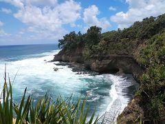 南太平洋2019-2020年末年始旅行記 【6】タンナ島3(シャーク・ベイ他)
