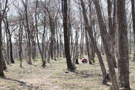 水郷県民の森で野草ウォッチング [2012](1)