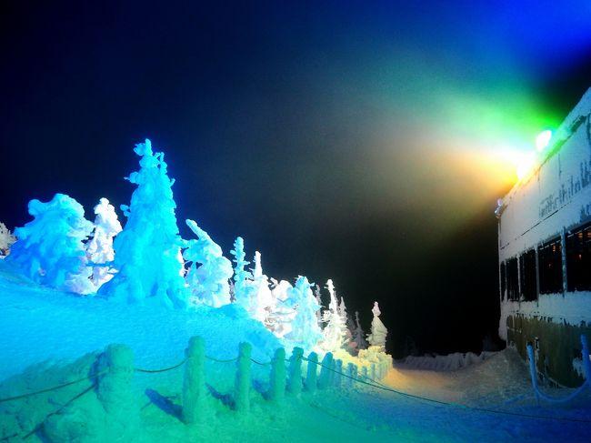 暖冬だけど樹氷を見たくて蔵王へ2*・゜・*樹氷ライトアップ*・゜・*