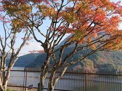 もみじの湯入浴後耶馬溪の紅葉はやはりヤバかった耶馬渓ダムその他甲斐君1歳になりました。