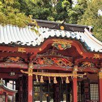 春の湯河原温泉と伊豆山神社