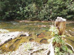 シェムリアップ2日目は水の遺跡巡り。