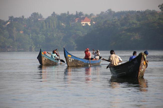 ウガンダ・ルワンダ マウンテンゴリラとナイルの源流 ②ビクトリア湖に漕ぎ出す