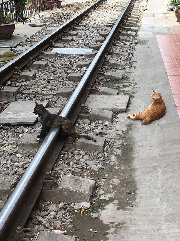 オタじゃなくとも鉄道にはまる夏ハノイ②