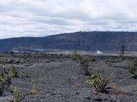 ハワイ島 フェアモントオーキッド4泊 ③ OVER60夫婦ドライブ旅 パワースポットを求めて 火山の女神ペレに会いに