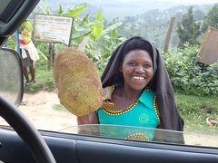 ウガンダ・ルワンダ マウンテンゴリラとナイルの源流 ④クイーンエリザベス国立公園ドライブサファリ ゴリラの起点、キソロへの移動がメインかも?