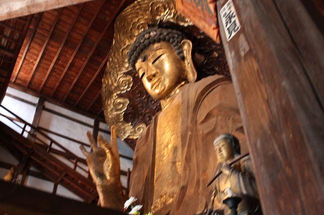 2020年 岐阜ミ・ツアーの旅 一日目その1。<br /><br />今回は申し込む前に、宿泊するホテルだけを探り当てていた。<br />訪れる観光地は、まったくわからなかった。<br /><br />最初に連れて行ってもらったのは、日本三大大仏の一つが安置されている、岐阜市にある正法寺だった。<br />住所はその名も、岐阜市大仏町八番地。<br /><br />日本には「日本三大○○」というものがたくさんある。<br />で、日本三大大仏は?<br />奈良東大寺の大仏と鎌倉の大仏は不動の地位を得ているが、三番目が意見の分かれるところらしい。<br />岐阜大仏の存在を知らなかった私は、富山高岡の大仏だと思っていた。<br />どうやら三番目の地位は、高岡と岐阜の二体が争っている様だ。<br />それがどちらであるにせよ、岐阜大仏も高岡大仏も共に素晴らしい!<br /><br />このミ・ツアーの参加者の中に、参加2度目の人がいた。<br />聞けば、同じ行程の旅行に再度参加する人って、結構いるみたいだ。<br />ミ・ツアーはお得だから、それもアリだなと思う。