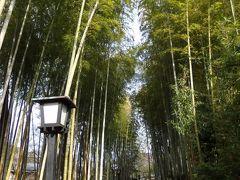 2020年 伊豆最古の温泉で過ごす2日間 ◆伊豆マリオットホテル修善寺◆