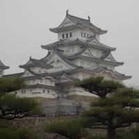行こう行こうと果たせなかった姫路城、やっと会えました
