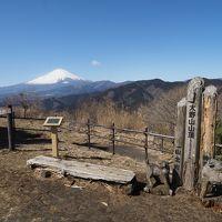 【関東の富士見百景】御殿場線で行く大野山ハイキング(神奈川県山北町)
