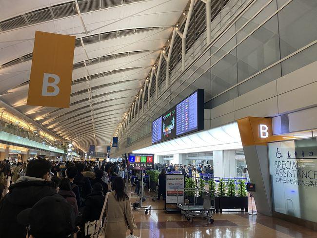 年末年始に帰省のため、大阪へ帰阪しました!<br />往路と復路のフライトだけの簡単なレビューです。<br /><br />*フライトスケジュール<br />12/28 NH041便 HND(19:15)→ITM(20:35)<br />1/2     NH016便 ITM(08:00)→HND(09:10)<br /><br />*滞在先ホテル<br />12/28~1/2 5泊 実家