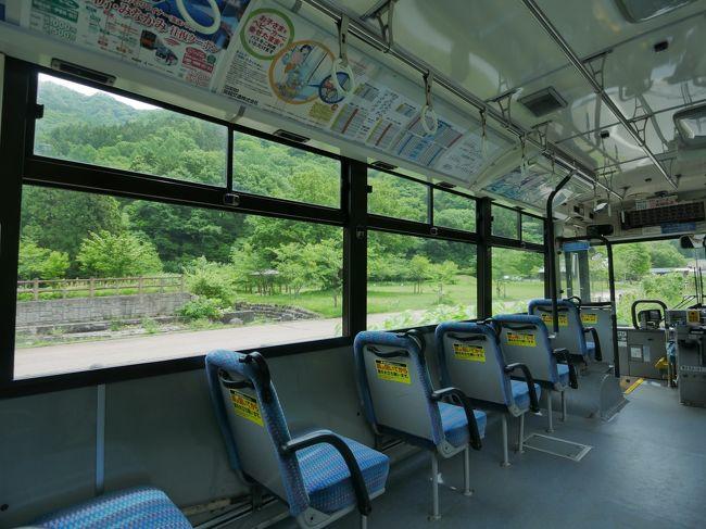 こんばんは。2月最後の旅行記は過去旅から蔵出し。例のタレント2人組がバスで旅する某番組に魅せられ、2年前の5月に「路線バスのみでの旅」を決行しました。但し某番組とは異なり「予めルートを調べてからの旅」と言う点がポイント。出発地は長年上越線撮影で頻繁に訪れて来た「みなかみ町」からスタートしたい!ということで谷川岳へ向かうロープウェイの乗り場がある「谷川岳ロープウェイバス停」から、東京都の「青梅駅」までのコースとなりました。<br /><br />さてどんな景色が待っているのでしょうか~
