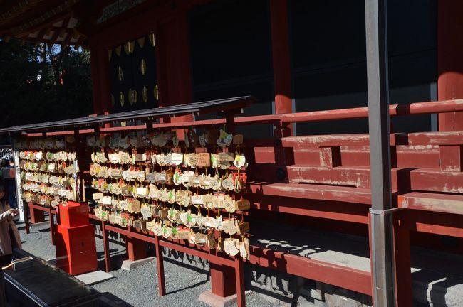 梅が見頃との噂を聞いたので、2月23日の令和初天長節に鶴岡八幡宮に行きましたが、梅の名所ではないようです。変わりに桜がちらほら咲いていました。\(◎o◎)/!