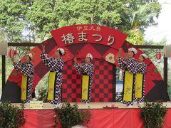 駆け足で見た大島公園「伊豆大島椿まつり」