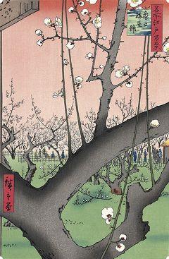 東京亀戸散策・・亀戸梅屋敷と亀戸香取神社をめぐります。