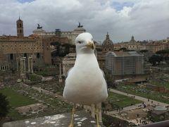 こんな時に初めてのイタリア2  コロッセオで古代ローマにタイムスリップ