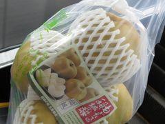 パソコンと梨を買いに行く旅(2019.9.9-10)