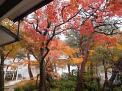 安来節と紅葉の日本庭園、安芸の旅。