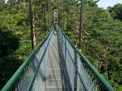 シンガポールのローカルエリアへの半日ぶらり旅(マクリッチ貯水池~TreeTop Walk)