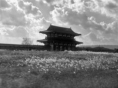 妄想奈良旅