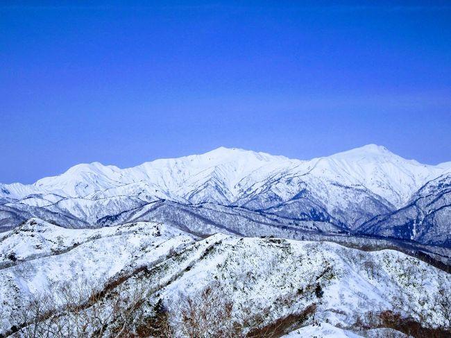 先週末は舗装路歩きが長く少々ハードでしたが、今回はスキー場のゴンドラを利用して奥美濃の大日ヶ岳で楽々の雪山ハイキング。間近に見える白山が絶景でした。<br /><br /><行程><br />名古屋駅7:50→ひるがの高原SA 9:32(高速バス)<br />ひるがの高原SA 10:10→高鷲スノーパーク10:40(無料シャトルバス)<br />高鷲SPゲレンデ山頂11:14-11:30前大日-11:43大日ヶ岳12:38-12:50前大日-13:01高鷲SPゲレンデ山頂(徒歩)<br />高鷲スノーパーク14:00→ひるがの高原SA 14:30(無料シャトルバス)<br />ひるがの高原SA 15:17→名古屋駅17:16(高速バス)
