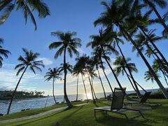 ヒルトン無料宿泊券とデルタのマイルでハワイ島5泊7日 その1