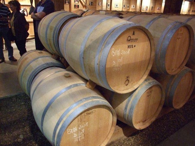 葡萄酒愛好家にとっては、ボルドーとブルゴーニュというのは究極の選択であり、桃源郷でもあります。ましてや、時は九月、畠には美酒の源たる葡萄の実が撓わに実り、収穫されるのを待っているというのは、夢にまで見る風景です。