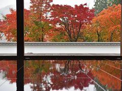 毎年恒例の秋の紅葉巡り&りんご狩り2019(1)-宝徳寺&高津戸峡ー