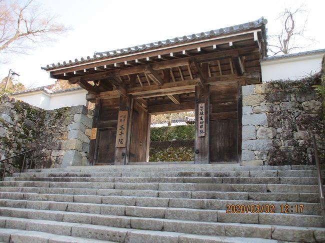 大原三千院に行きました。のどかな大原の里、観光客の少ない三千院は落ち着いたお寺でした。