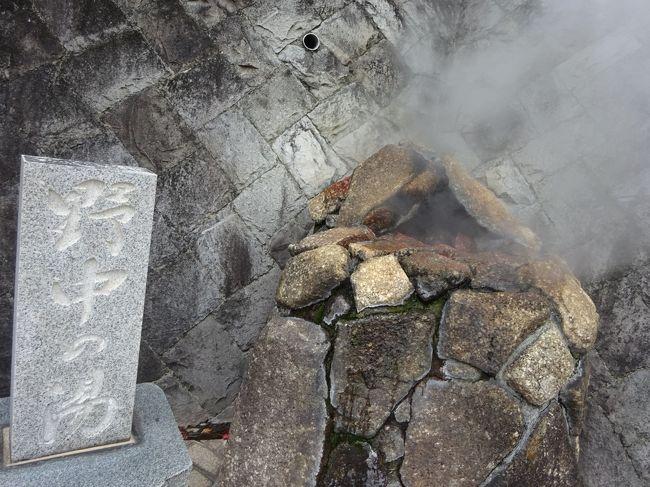 冬の寒い時期になると温泉に行きたがる旦那。<br />ほぼ毎年のように函館に行ってましたが、今年は伊豆の修善寺と熱海にしました。<br /><br />そういえば、伊豆の温泉は色々な所に行きましたが、熱海には泊まったことが無かったので初熱海でした。<br />最近は人気があるせいか、伊藤園ホテルグループも熱海はそんなに安くはありません。<br />以前行った伊東はかなり安かったですが、熱海は都心からも近いのが魅力でしょうか。<br /><br />久しぶりの温泉。<br />温泉に入ると肌が乾燥しないのがいいですね。