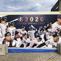2020 沖縄ヤクルト巨人キャンプ旅