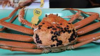 2020年3月 令和だけど平成へ(笑)「料理旅館平成」で蟹のフルコース&「氣比神宮」~「永平寺」へ!荒波の越前海岸に大興奮なドライブ女子旅♪