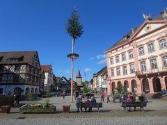 花のマイナウ島とアルザス地方・黒い森・スイスを巡る8日間+1日☆その6☆ゲンゲンバッハ~美しいマルクト広場(*^-^*)
