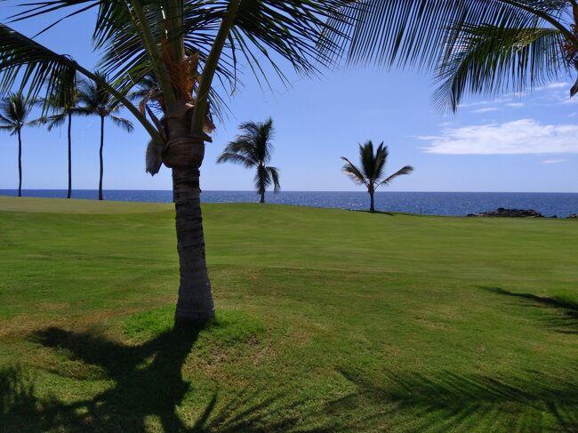 令和最初の夏休みは神秘の島、ハワイ島へ。<br />何年も前にオアフ島に行ったときは時間がなくてハワイ島まではいけなかったの。。。<br />数年越しの念願が叶いました。<br /><br />今回の旅の目的は、マンタさんに触ってもらうこと(こちらから触るのは禁止)、青い海を見ながらゴルフをすること、海風を浴びながらのんびりすること、アメリカンなお買い物を楽しむこと、です~。<br /><br />2019/7/11 成田→ハワイ島<br />2019/7/12 ハワイ島:島内観光<br />★2019/7/13 ハワイ島:ゴルフ<br />2019/7/14 ハワイ島:マンタに会いに→延期<br />2019/7/15 ハワイ島:ロミロミマッサージ、マンタに会いに<br />2019/7/16 ハワイ島→<br />2019/7/17 →成田<br /><br /> <br /><コートヤード キング カメハメハズ コナ ビーチ ホテル><br />https://4travel.jp/os_hotel_tips_each-13704711.html<br /><br />
