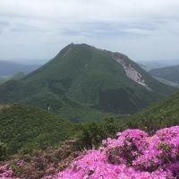 どこかにマイルで ミヤマキリシマ と 黒川温泉 と 臼杵大仏
