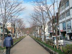 初★ 鎌倉