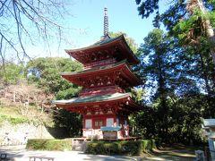 史跡・横須賀城跡と遠州三山をめぐる