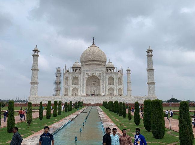 旅行会社のツアーに参加した時の旅行記です<br />往復は全日空ANA直行便利用でインド内移動は観光バスでした<br />世界遺産をたくさん観ることができ感激しました<br />やはりタージマハルは別格です!