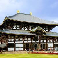 吉野の桜と奈良・世界遺産 ② (奈良公園・東大寺)