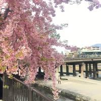 リッツカールトン京都で優雅な時間を♪