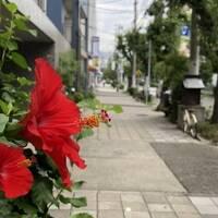 2019年関西ツアー第1弾 神戸・新大阪